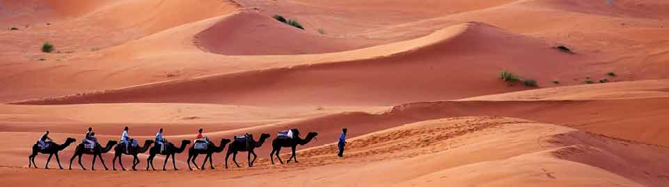 image of desert hiking in algiers in algeria