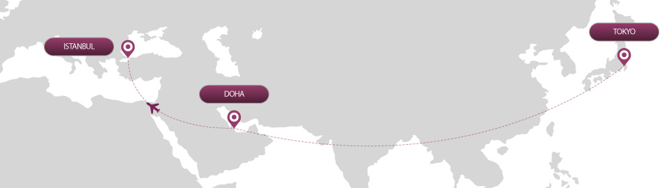 image of route map for flights from tokyo to istanbul