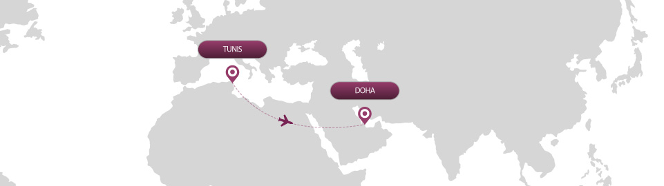 image of route map for flights from tunis to doha