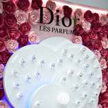 QATAR DUTY FREE AND DIOR UNVEIL IMMERSIVE EXPERIENCE WITH ROSE CASCADE EXHIBIT