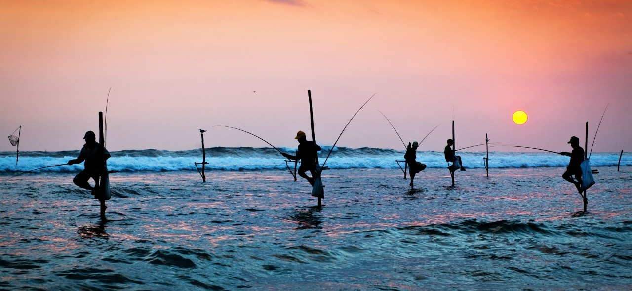Silhouettes of the traditional stilt fishermen at the sunset near Galle in Sri Lanka.