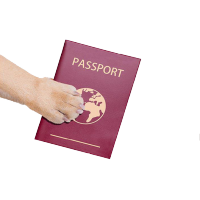 Image of a pet's passport
